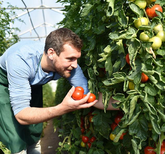 Protéger l'agriculture grâce au projet agricole