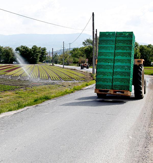 Le projet agricole d'Annemasse Agglo